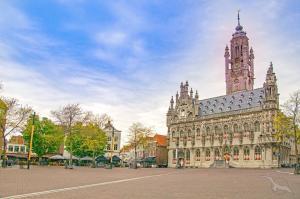 Historische Städte in Holland und Belgien: Bonn - Antwerpen - Bonn mit der MS Viola