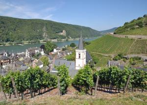 Höhepunkte an der Mosel: Köln - Trier - Koblenz - Köln mit der MS Switzerland