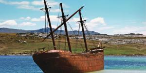 MS PLANCIUS: Falklandinseln