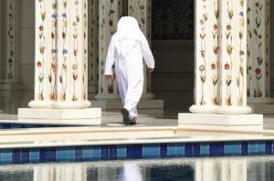 Mit MS Amadea im Orient: ab Dubai/bis Nizza mit der MS Amadea