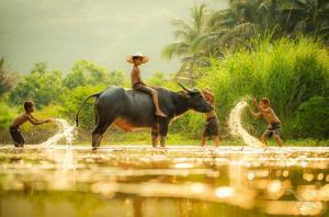 Morgenröte: Angkor Wat - Tonlé See - Mekong-Flussfahrt - Mekong-Delta - Saigon mit der MS Lan Diep