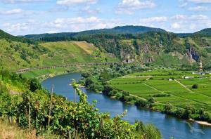 Rheinromantik und Moselzauber: Köln - Andernach - Rüdesheim - Zell - Trier - Koblenz - Linz (Rhein) - Köln mit der MS Switzerland