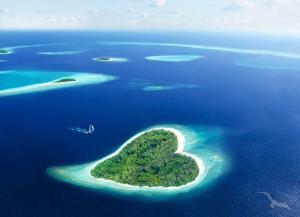 Trauminseln im Indischen Ozean: Colombo - Malé & Kuda Bandos - Victoria - Praslin - La Digue - Le Port - Port Louis mit der MS Artania