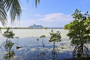 Von Bali an die Adria: Benoa (Bali) - Singapur - Colombo - Mumbai - Dubai - Muscat - Aqaba - Santorin - Kotor - Triest mit der MS Albatros