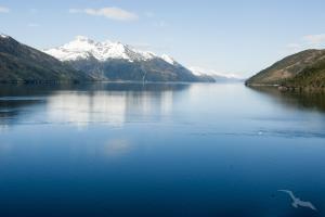 Von Rio in die Fjordwelt Chiles: Rio de Janeiro - Punta del Este - Montevideo - Buenos Aires - Puerto Madryn - Punta Arenas - Puerto Montt - San Antonio mit der MS Amadea